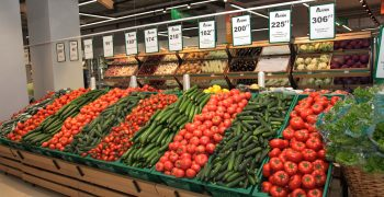Russia's winter vegetable production up 8.4%
