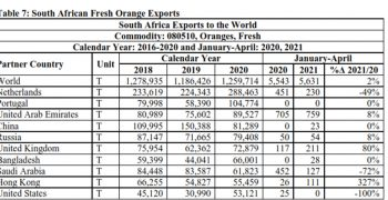 South African citrus continues its ascent