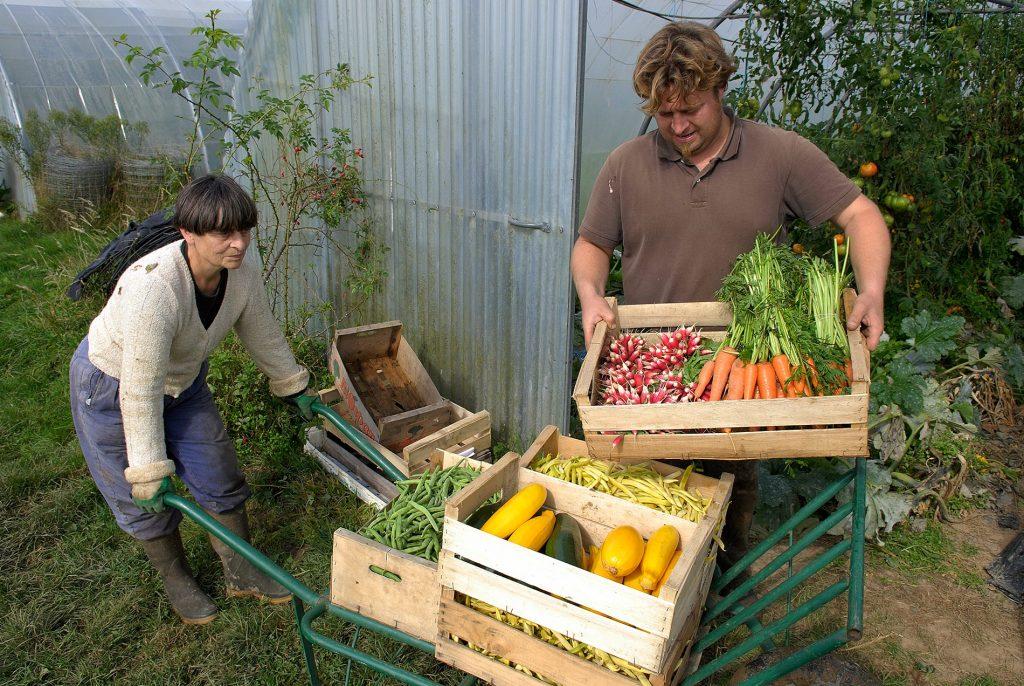 Organic farmer Benoit Vivien © Stéphane LEITENBERGER