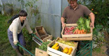 EU study shows benefits of ambitious green farming requirements