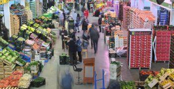 Spain's fruit exports rebound in June