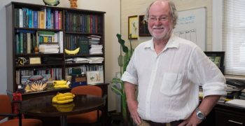 First Cavendish banana plants with resistance to Fusarium developed