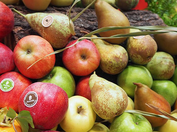 Brunilda Fruit, apples and pears