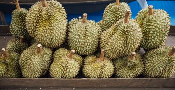 Traces of Covid on durian packages imported from Thailand