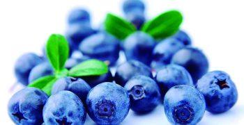 Peru's blueberry exports set to smash 200,000-ton barrier