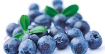 Peruvian blueberries gain access to Malaysia and India