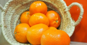 New protocol boosts prospects for South African citrus exports to China