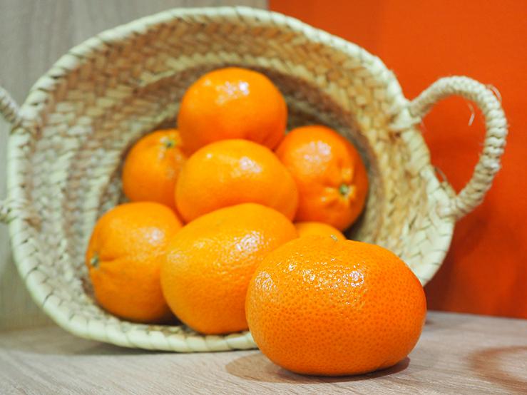 Mandarines © Alexandra Sautois, Eurofresh Distribution