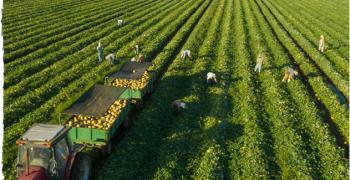 Del Monte announces progress towards long-term sustainability goals
