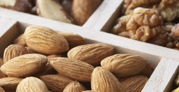 India's nut imports show strong growth