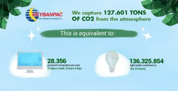 Carbon neutral certification for Reybanpac bananas