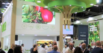 UNICA to meet sector at face-to-face edition of Fruit Attraction