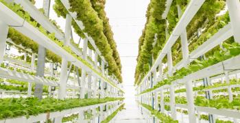 Organics drive spread of vertical farming