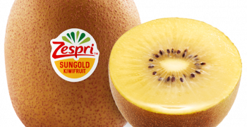 SunGold smuggler loses appeal