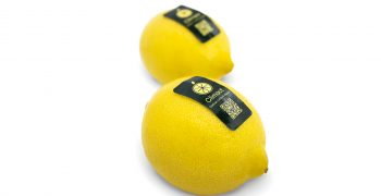 Climact: Firts carbon neutral lemons are produced in Spain